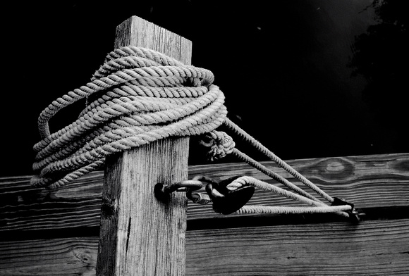 Rope & Pully